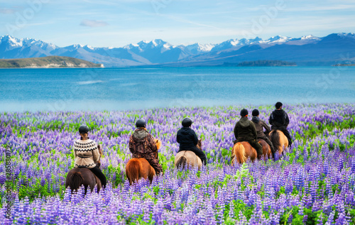 Tablou Canvas Travelers ride horses in lupine flower field, overlooking the beautiful landscape of Lake Tekapo in New Zealand