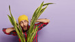 canvas print picture - Surprised young European man looks curiously through sansevieria plant, has embarrassed facial expression, wears yellow hat and plaid shirt, isolated over purple background with blank space.