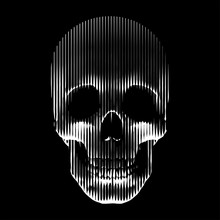Vector Line- Art Skull Made By Vertical Lines. Human Skull Front View, Enlightened From Under.
