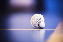 Badminton Racket And Shuttlecock On Strings
