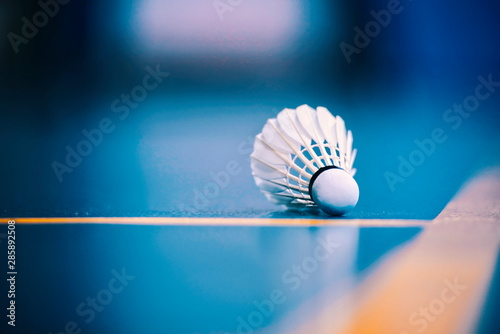 Photo badminton racket and shuttlecock on strings