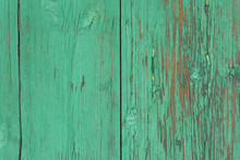 Wooden Background With Green P...
