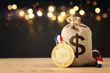 Business Concept Of Success, Best Investment And Reward For Performance. Money Bag With Gold Medal