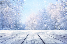 Winter Christmas Scenic Landscape With Copy Space. Wooden Flooring, White Trees In Forest Covered With Snow, Snowdrifts And Snowfall Against Blue Sky In Sunny Day On Nature Outdoors, Blue Tones.