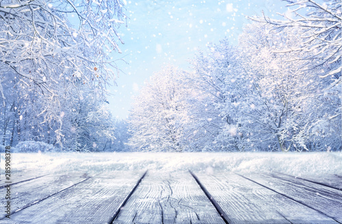 Foto auf Gartenposter Licht blau Winter Christmas scenic landscape with copy space. Wooden flooring, white trees in forest covered with snow, snowdrifts and snowfall against blue sky in sunny day on nature outdoors, blue tones.