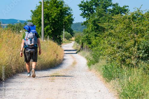 Un viaggiatore solitario con lo zaino in spalla cammina lungo una classica strad Canvas Print