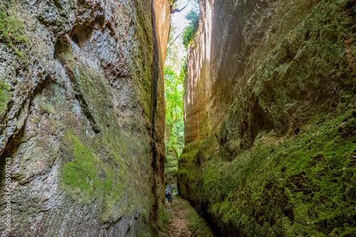 Fototapeta  Le incredibili vie cave, sentieri scavati nella roccia di tufo dagli etruschi in