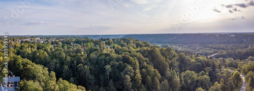 Aerial view of beautiful green forest, Latvia Canvas Print