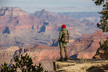 A Hiker In The Grand Canyon Na...