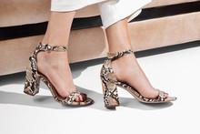 Girl Legs Shoes Heels Animal Print