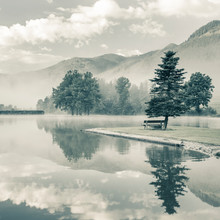 Morning On A  Lake With Alone Tree And Bench