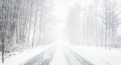 Snowy winter road during blizzard in Latvia Wallpaper Mural