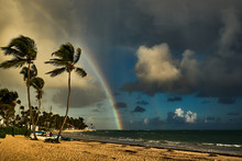 Beautiful Tropical Landscape On A Rainbow Background