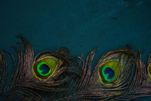 Bright Multicolored Peacock Feathers On Dark Background. Symbol Of Krishna In Hinduism Religion
