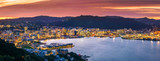 Fototapeta Miasto - Wellington city and harbour from Mount Victoria at sunset.