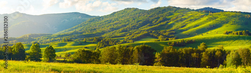 Obraz Mountain Slopes, Trees and Meadows, Vibrant Summer Sunset with Warm Sun Flare through the Clouds. Altai Mountains, Kazakhstan. - fototapety do salonu