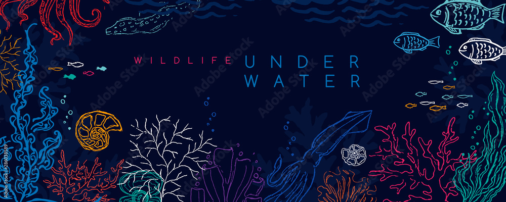 Fototapety, obrazy: Underwater banner. Vector background with reef landscape. Corals, fish, polyps, shellfish and seaweeds and other sea wildlife.