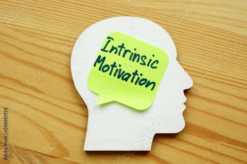 Intrinsic motivation written on a wooden head silhouette. Wallpaper Mural