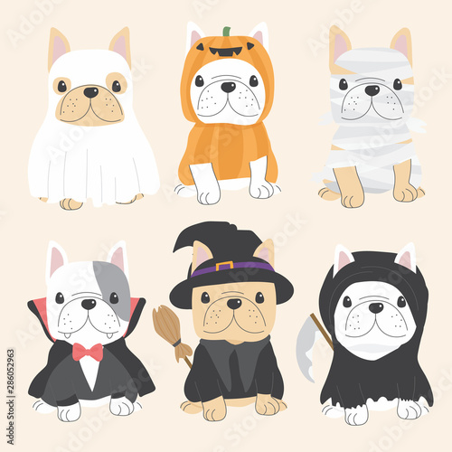Obraz cute french bulldog dog in Halloween costume flat style collection eps10 vectors illustration - fototapety do salonu