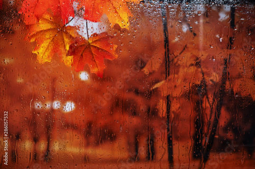 Autumn rain outside the window