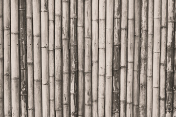 Black and White : Old Brown bamboo fence background