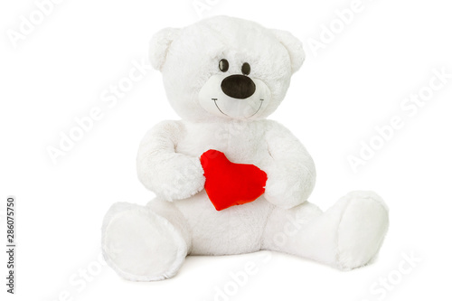 Image of white toy teddy bear holding red heart and sitting at isolated white background.