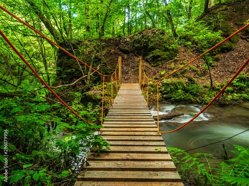 Fototapety, obrazy: Rope bridge across mountain stream in the woods