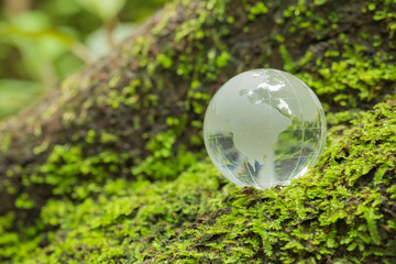 Close up of glass globe in the forest.