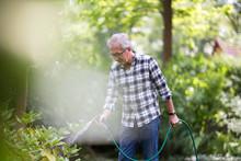 Retired Man Watering Plants In The Garden