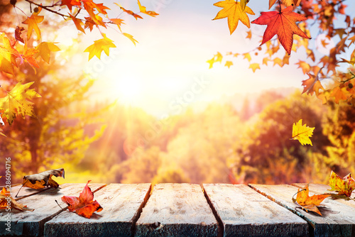 Aluminium Prints Equestrian Autumn Table With Red And Yellow Leaves And Forest Background