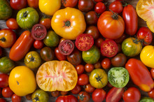 Close Up Of Colorful Tomatoes,...
