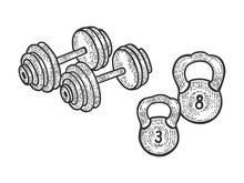 Sport Equipment Barbell And Weights Dumbbell Sketch Engraving Vector Illustration. Scratch Board Style Imitation. Black And White Hand Drawn Image.