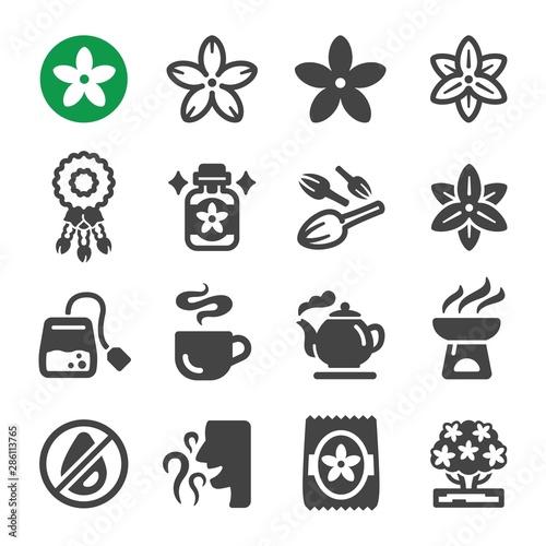 Photo  jasmine flower icon set,vector and illustration