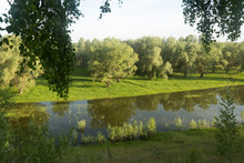 A Small River Along The Banks Is Overgrown With Beautiful Shrubs With Overhanging Birch Branches With Green Leaves. Shooting Summer Evening.