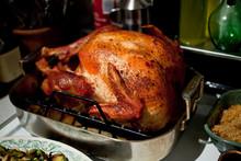 Close Up Of Turkey In Roasting Pan