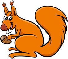 Squirrel Cartoon Animal Charac...
