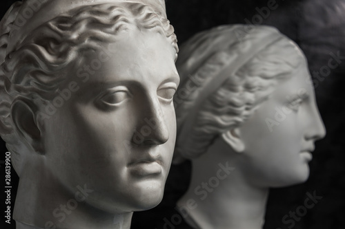 Fototapety, obrazy: Gypsum copy of ancient statue Venus and Diana head on dark textured background. Plaster sculpture face.