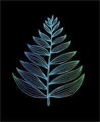 Obraz na Szkle Liście Color picture of a fractal leaf. Branch of a fern