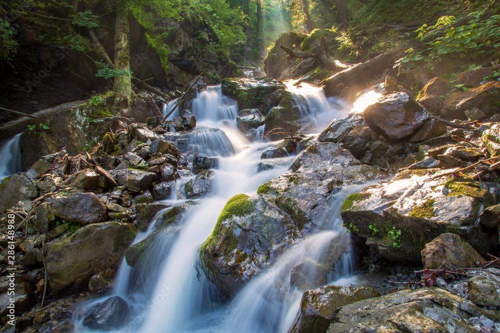 Fototapety, obrazy: Allgäu - Gaisalptobel - Fluß - Rubihorn - Wasser