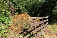 Misthaufen Hinter Dem Zaun