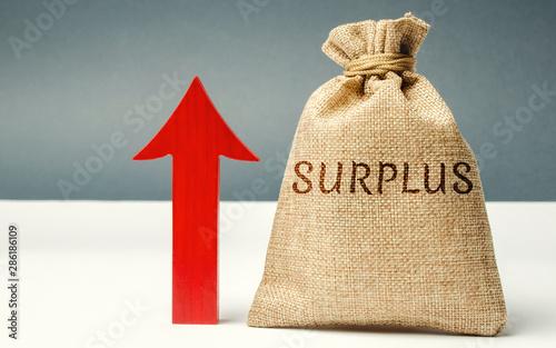 Money bag with the word Surplus and up arrow Obraz na płótnie