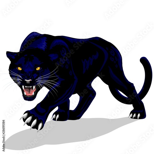 Aluminium Prints Draw Black Panther Spirit Roaring Vector illustration isolated on white.