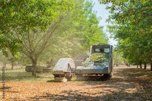 Foto almond tree shaker shaking trees, leaves falling from trees being shaken, tree s