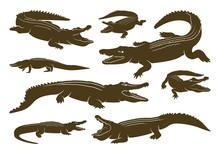 Set Of Crocodile Logo Vector. ...