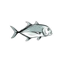 Vector Of Giant Trevally On White Background. Fish Cartoon.