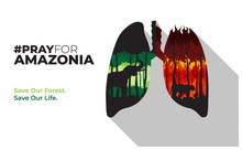 Poster Pray For Amazonia Illustrated With Forest Fires And Green Trees Inside Lungs Vector