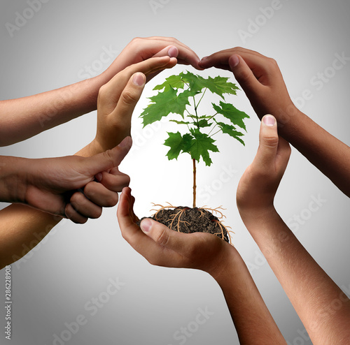 Canvas Print Multicultural Hands Holding A Plant
