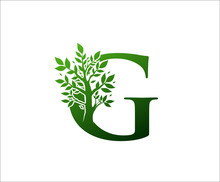 G Logo Letter Created From Tree Branches And Leaves. Tree Letter Design With Ecology Concept..