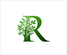 R Logo Letter Created From Tree Branches And Leaves. Tree Letter Design With Ecology Concept..