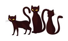 Black Cats Happy Halloween Cel...